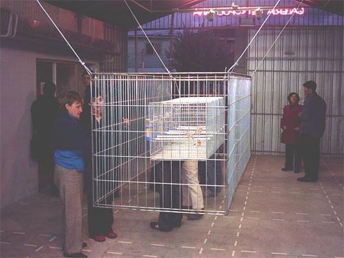 """""""Territorio Sonoro"""", 2004"""